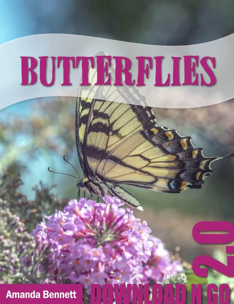 Amanda Bennett Unit Study Butterflies