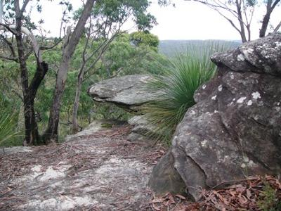 Nature Journaling at High Rocks